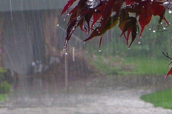 میزان بارندگی در ایران کمتر از 30 درصد متوسط دنیاست