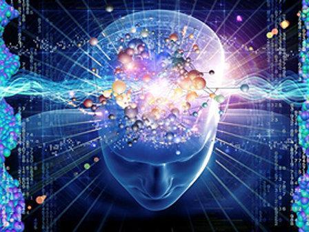 برگزاری مسابقه ایده پژوهشی برتر در مدرسه پاییزه مغز و ذهن