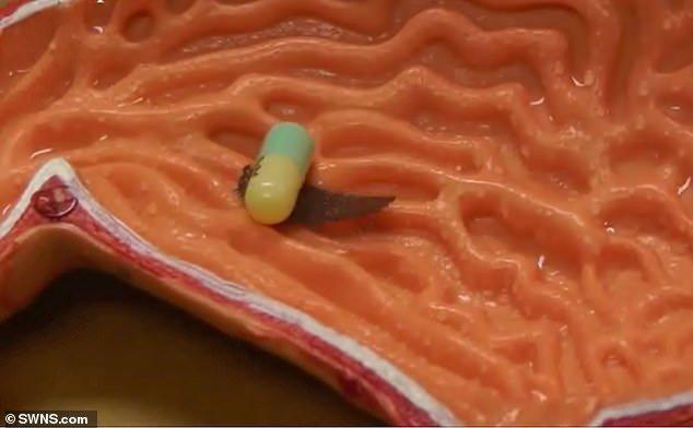 ربات هزارپایی که به داخل بدن دارو می رساند