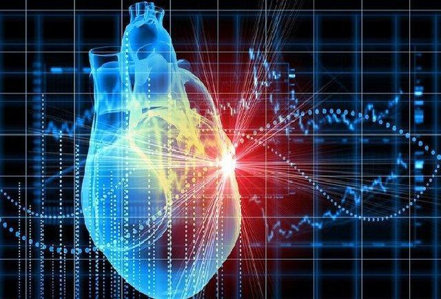 کاهش مرگ و میرهای ناشی از بیماری های قلبی در یزد، برنامه 10 ساله یزدی ها برای کاهش مصرف نمک