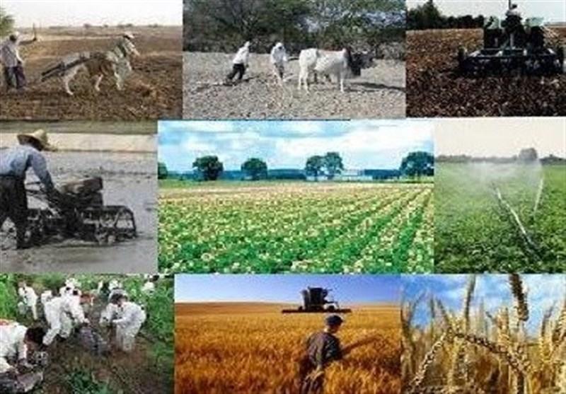 پرداخت بیش از 2 هزار میلیارد ریال تسهیلات اشتغال روستایی در استان