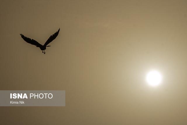 اطلاعیه مرکز پایش آلودگی هوا درباره تشدید آلودگی هوای پایتخت
