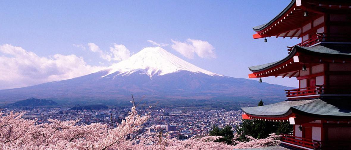 کارهایی که باید در سفر به توکیو انجام داد