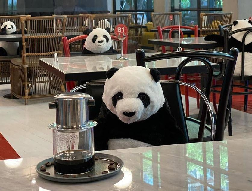 این رستوران راهی جالب برای کاهش احساس تنهایی مشتری ها، در عین رعایت فاصله گذاری اجتماعی پیدا کرده است!