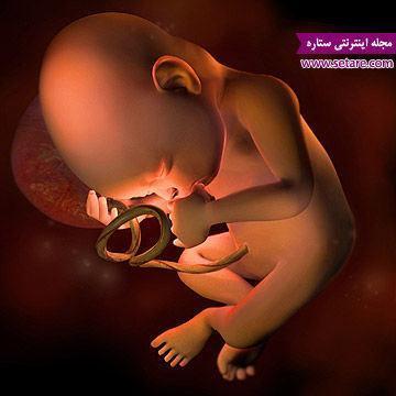 هفته سی ام بارداری - بارداری هفته به هفته