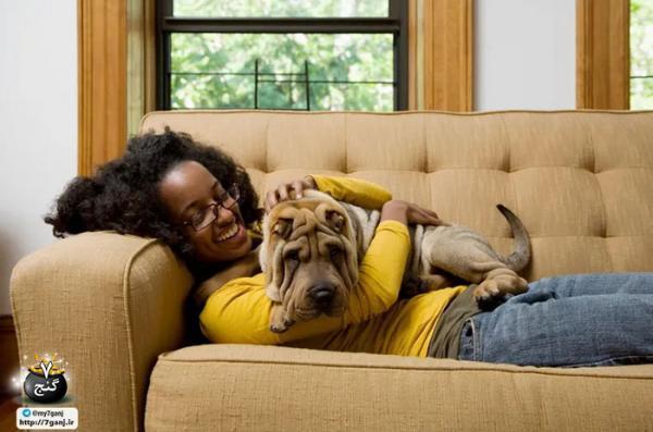 اگر در دریافت حیوان خانگی مردد هستید این 8 سوال را از خود بپرسید