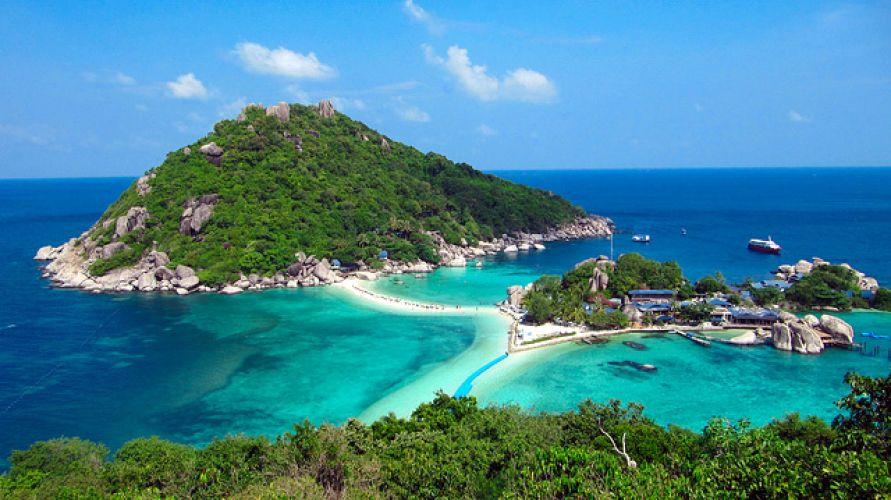 جزیره لاک پشت سامویی